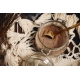 70% Kakaový prášok nealkalizovaný osladený panelou(malé balenie)